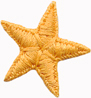 "15/16"" Star Applique - Bright Orange-0"