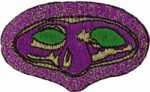 1 3/4'' by 2 3/4'' Iron On Mardi Gras Mask Applique1 3/4'' by 2 3/4'' Iron On Mardi Gras Mask Applique